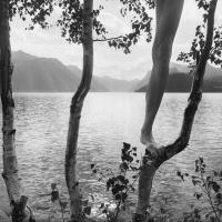 Artist ©Arno Rafael Mikkinen