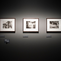 Sally Mann - A Matter of Time