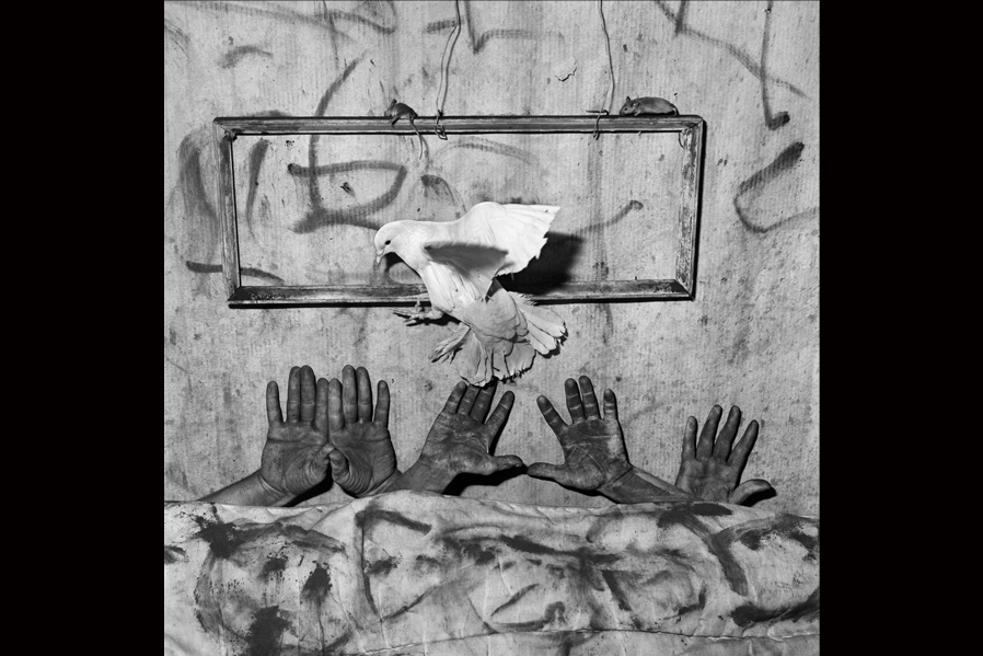 Roger Ballen// 